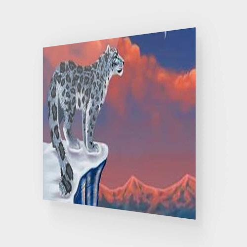 AcrylicPrint
